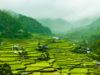 panorama filippine