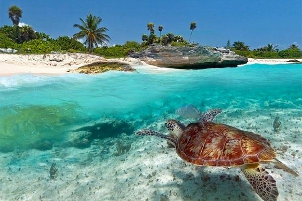 Nel cuore di Zanzibar ... l'affascinante Stone Town!